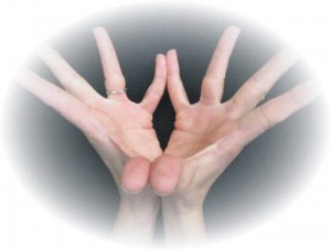 The meaning of hasta (hand) mudras | Intuitive Flow